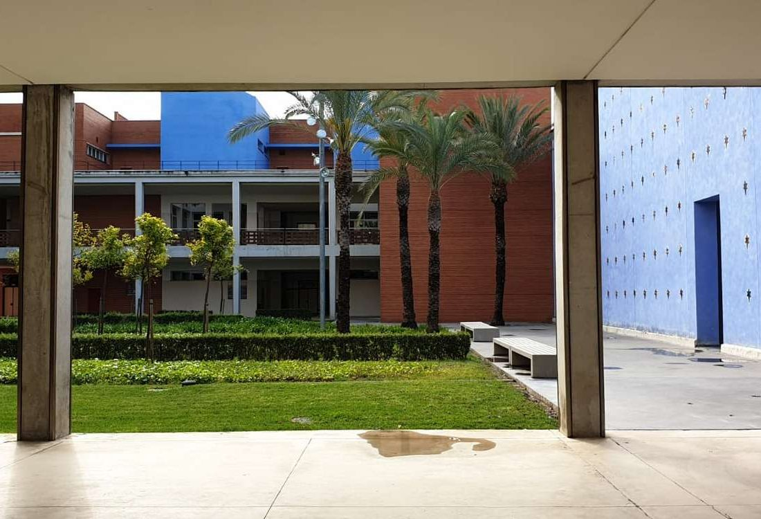 campus-upv-valencia-hablo-education-80